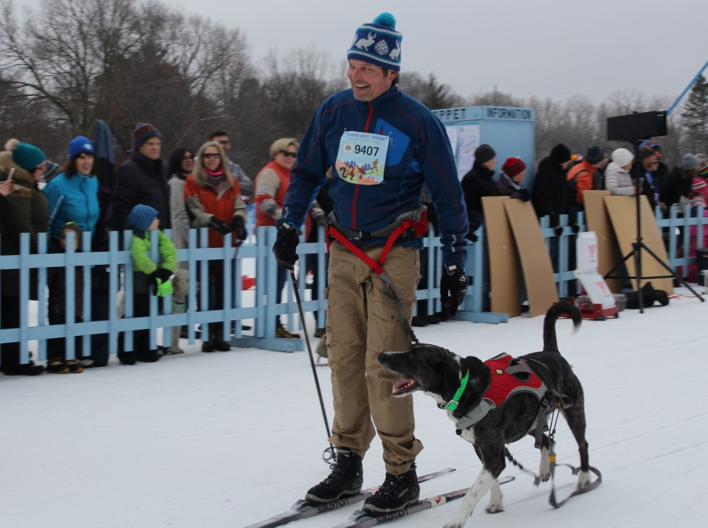 Glenn Ronning of Minneapolis with his dog Bill, a catahoula, at the end of the Chuck & Don's Skijoring Loppet and One-Dog National Championship Feb. 2 at Theodore Wirth Park. Photo by Nate Gotlieb